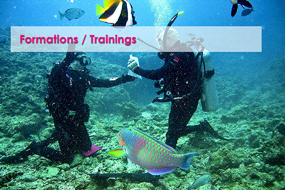 Formations / Trainings