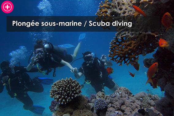 Plongee sous marine / Scuba diving